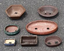 1024px-Assorted bonsai pots