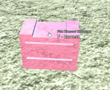 Booga Booga Pink Diamond Armor