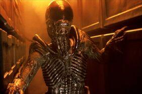 Alien28