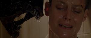 Alien27