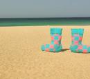Squeaky Socks