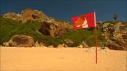 58 Fido's Flag