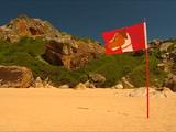 Fido's Flag