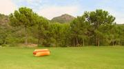 026 Hot Dog