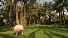 035 Piggy Bank