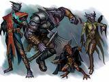 Bahamut's Dragonborn