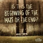 Movie-Quotes-the-maze-runner-film-37106017-800-800