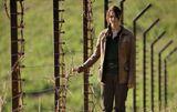 D12 fence