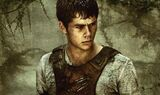 The Maze Runner 29