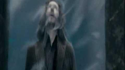 Harry potter and the order of the phoenix sirius death dvd
