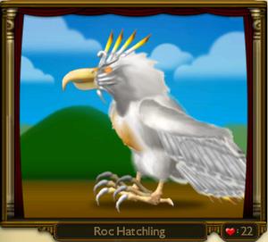 Roc Hatchling