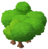 MangroveThicket