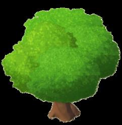 MangroveTree