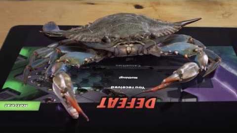 Mega Crab vs. Real Crab!