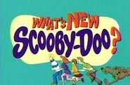 Whatscoobylogo