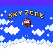 Sky Zone Title