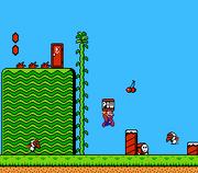 Super Mario Bros. 2 Gameplay