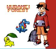 Pokemon Gold Silver - Wubamei Forest