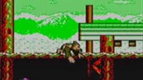 Super Donkey Kong 5 (Game Boy Color)