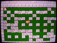 Screenshot of the game, with Woody as Bomber man