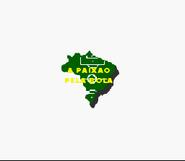 Futebol Brasileiro '96 - 1