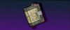 BL3 Book of the Storm Trinket