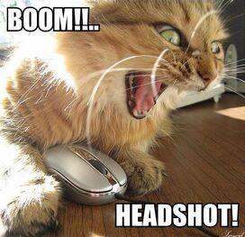 Boomheadshot
