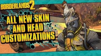 Borderlands 2 All 18 New Skin, Head, And Vehicle Customizations!