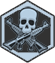 Skill Icon - Onslaught.png