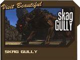 Skag Gully