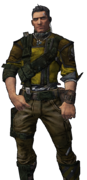 BL2-Axton-Skin-Double Down Browntown