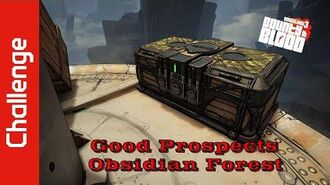 Good Prospects (Obsidian Forest)