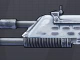 Fusil d'assaut (Borderlands 2)