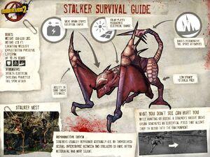 Stalker profile