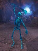 Skelleton Enchanted Nova 1