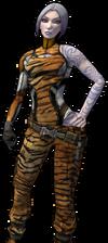 СкМ - Тигр