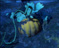 Pumpkin 1.png