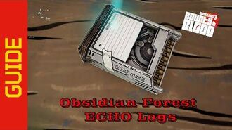Obsidian Forest ECHO Logs