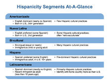 Geoscape-Hispanic-Segmentations