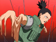 Shikamaru Genjutsu