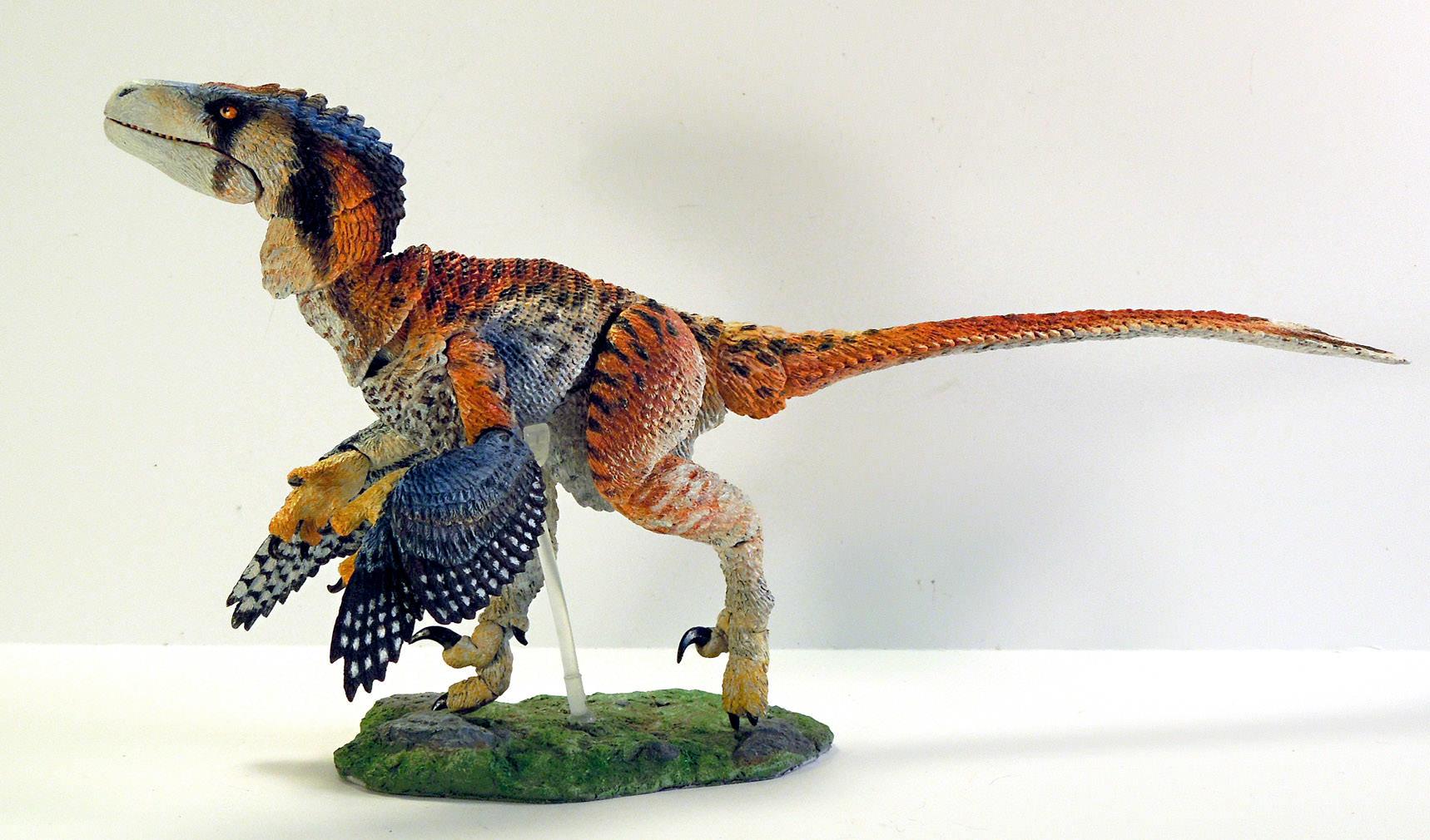 Dromaeosaurus albertensis Raptors Beasts of the Mesozoic