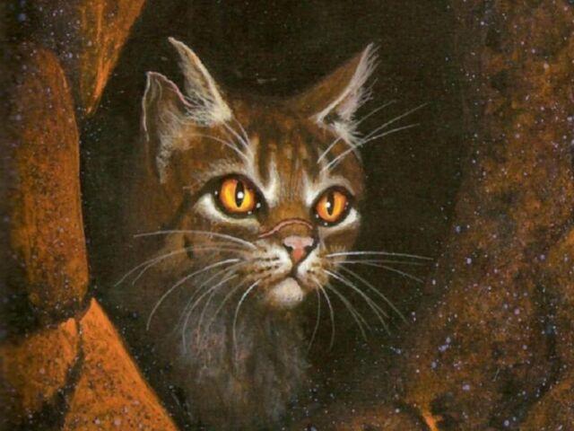File:Wallpaper-tigerstar1600x1200.jpg