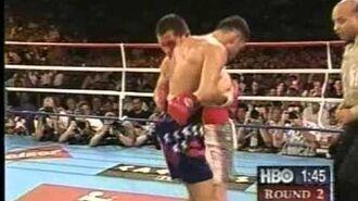 Julio Cesar Chavez VS Oscar de la Hoya 1. Date-1996-06-07