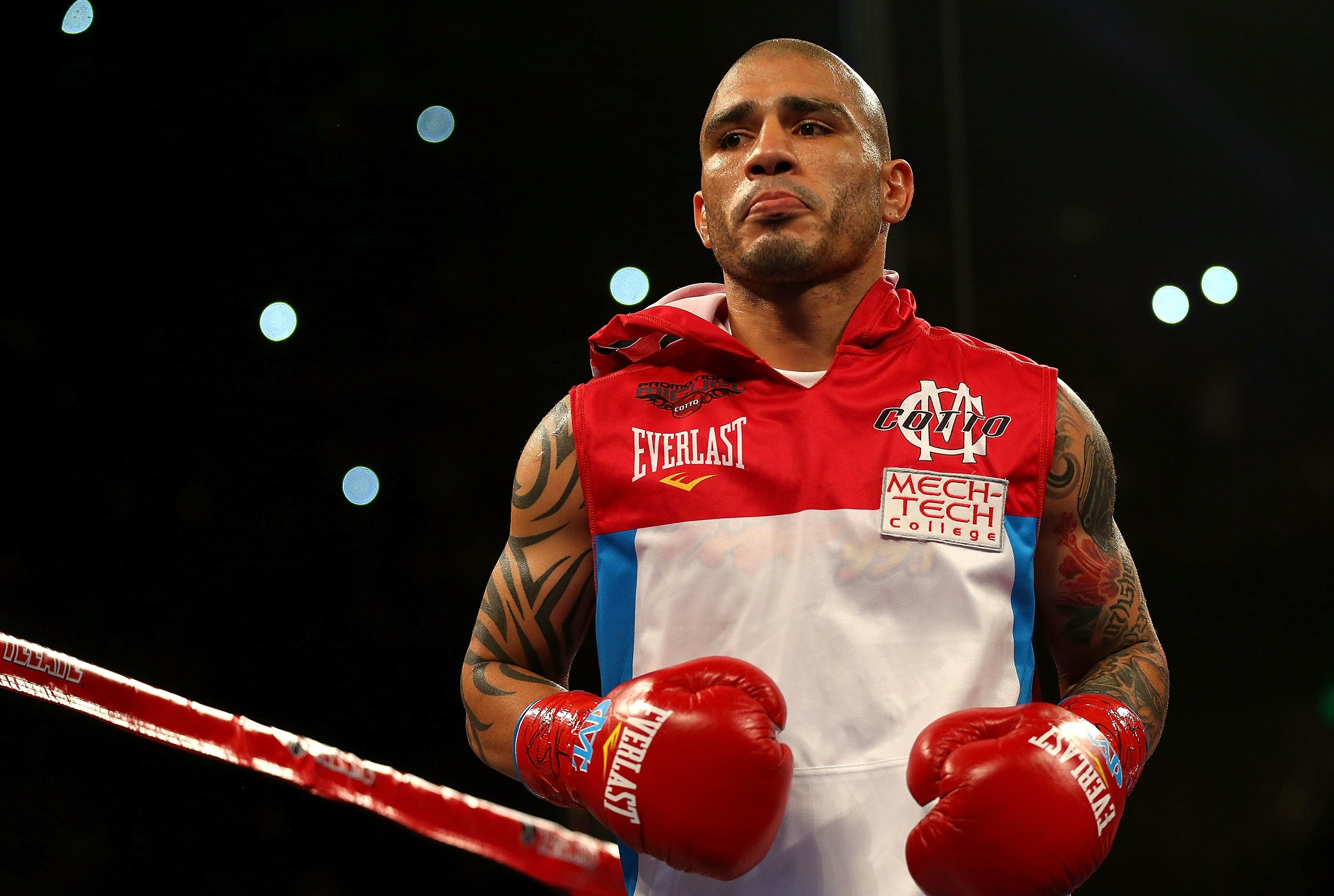 Image   Miguel cotto wallpapers. | Boxing Wiki | FANDOM powered