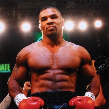 Mike Tyson Boxing Wiki Fandom