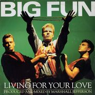 Big-Fun-single-living-for-your-love