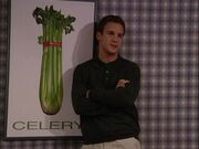 BMW Better Than the Average Cory-Celery