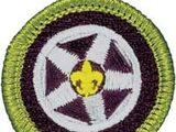 Automotive Maintenance (Merit Badge)