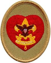 Life Scout Patch