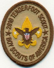2010 Tenderfoot patch